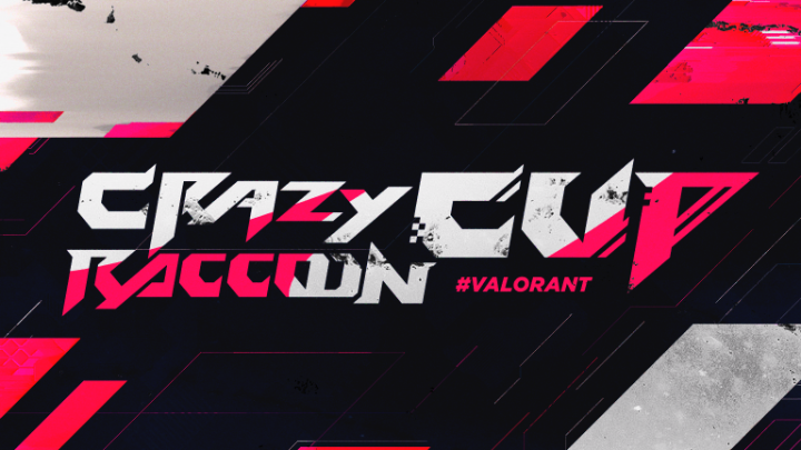 第1回 Crazy Raccoon Cup VALORANT OP映像に楽曲提供 [Neoteny]